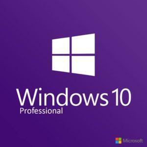 MS Windows 10 Professional @microkeys.com